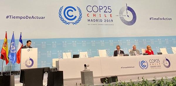 Bộ TN&MT báo cáo Thủ tướng Chính phủ kết quả Hội nghị COP25